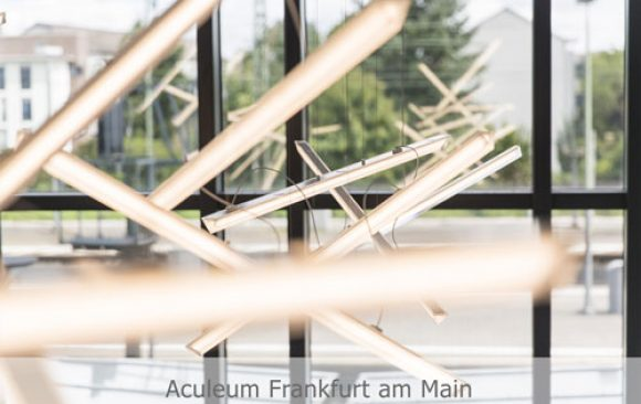 Aculeum Frankfurt am Main