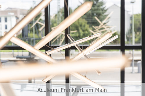 Aculeum Frankfurt am Main