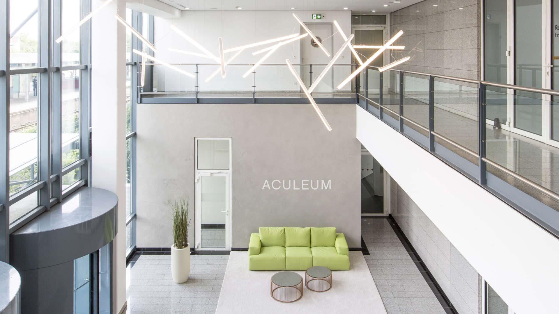 aculeum-01
